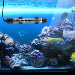 Aquarium Heater For Sale Buy Fish Tank Heater Warmer Online Cheap Price
