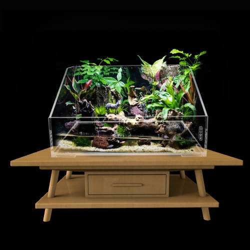 Acrylic Turtle Fish Tank for Aquatic Pets
