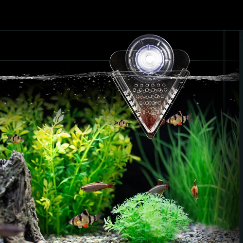 Acrylic V-Shaped Red Worms Feeder