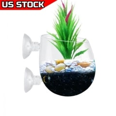 Aquarium Plant Pot Glass Plant Holder 2pcs